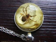 Necklace with spider in resin by zusnA on Etsy