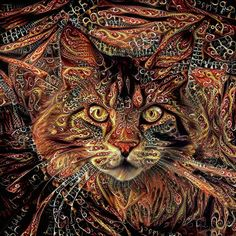 Maine Coon Cat Art Print by Peggy Collins - рисунки - Cats Cat Art Print, Cat Decor, Maine Coon Cats, Psychedelic Art, Cat Gifts, Cool Cats, All Art, Fine Art America, Illustration Art