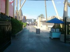 Five More Things You Didn't Know You Could Do at Universal Orlando - The Orlando Informer