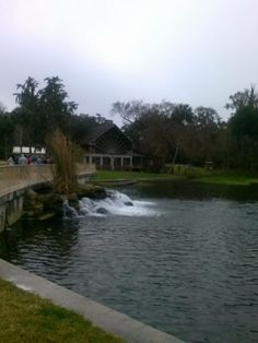 Florida's Ponce Deleon Springs | Last Mom