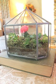Woven Home: How to make a terrarium