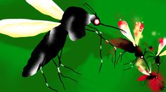"""""""Surprise new project by Alphabets health spin-off Verily which says it hopes to release millions or billions of sterilized mosquitoes as a way to battle the spread of dengue and the Zika virus""""-mvea. Postedby www.eurekaking.com"""
