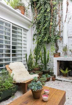 diy mug designs Diy Mug Designs, Outdoor Living, Outdoor Decor, Garden Pool, Green Life, Small Gardens, Growing Vegetables, Home Decor Furniture, Beautiful Gardens