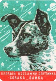 1957 astronaut dog  Layka Laika dog in space FIRST USSR Pocket Calendar