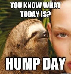 #humpday #happyhumpday #doesitmatterinquarentine