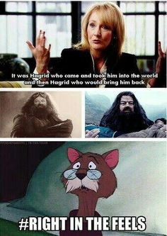 Hagrid brought him to 4 Privet Drive, Diagon Alley, and Hogwarts. So he's the one to carry Harry out of the forest.