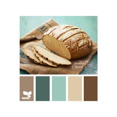 Design Seeds for all who color ❤ liked on Polyvore featuring colors, design seeds, backgrounds, color palettes and colours