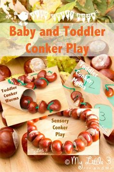 Are you BONKERS about CONKERS too? We've got fun ideas for babies and toddlers to play and learn with conkers / buckeyes.