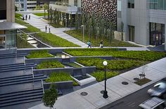 Stunning urban gardens in Seattle by Phillips Farevaag Smallenberg