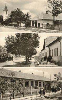 Bucsa Egy régi képeslap Bucsáról. A Bucsai Helytörténeti Múzeum gyűjteményéből!