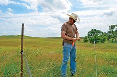 Grass farmer first, beef producer second: The art of grazing