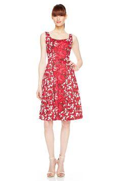 Rose Print Dress at Rose Print Dress - Daytime at Maggy London