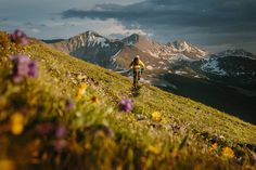 Colorado Trail - explore it on a bike
