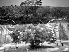 """pataras - questa immagine un po' forzata mostra bene il concetto di """"pataras"""" che da lontano sembra neve, ma la differenza è che quando si posa si trasforma rapidamente in acqua."""