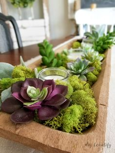 Nature-inspired spring decorating! Visit www.diybeautify.com for the full tour!