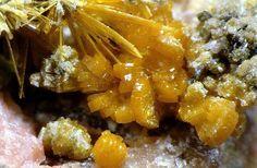 Orthowalpurgite et Walpurgite. Schmiedestollen, Wittichen FOV=4 mm Photo hfwf