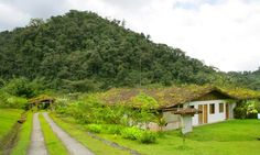 Rancho Margot, Costa Rica, off the gride eco lodge - One of Top 10 affordable eco-lodges in Costa Rica #ecotourism