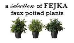 Yes, I'm going there - faux potted plants from Ikea. My kind of green thumb lol!