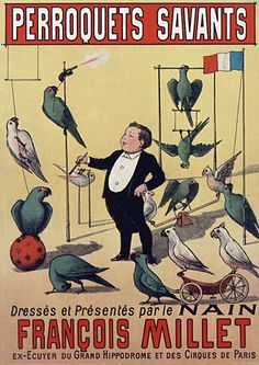 Francois Millet & his parrot savants.  Vintage circus poster.  1890s  http://www.vintagevenus.com.au/collections/food/products/vintage_poster_print-c457