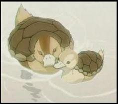 Turtle ducks~~~