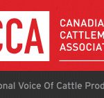 Agriculture Minister Gerry Ritz today was joined by the Honourable Gail Shea, Minister of Fisheries and Oceans and Regional Minister for Prince Edward Island in addressing the Canadian Cattlemen's Association (CCA) semi-annual meeting.