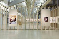 Galapagos exhibition at Centro de Arte moderna Lisbon designed by Camrody Groarke