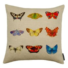 #butterfly #insect #cushion #garden #nature