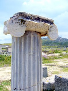 Modénature : ensemble des moulures qui ornent un monument, une corniche ou l'ordre qui les caractérise (couronnement, frise, chapiteau et base pour un edifice grec par ex).
