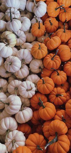 Fall aesthetic pumpkins