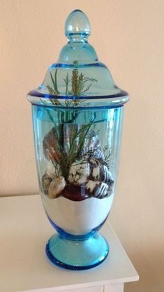 She's spelled by sea shells so she brings them indoors and creates a Caribbean tropical plant/sea shell scape :)