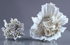 Filter Skins by Jessica Drenk coffee filters dipped in porcelain slip & fired