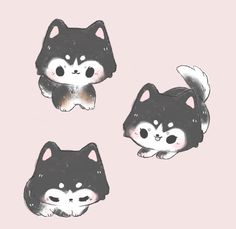 a husky for ✨ Cute Kawaii Animals, Cute Animal Drawings Kawaii, Cute Little Drawings, Cute Cartoon Drawings, Cute Cartoon Animals, Cartoon Art Styles, Cute Little Animals, Kawaii Art, Cute Dog Drawing