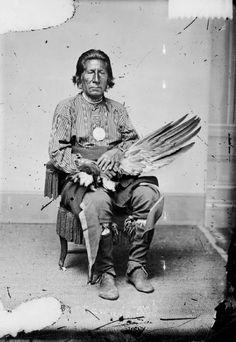 I Pawnee sono una tribù di Nativi Americani, di lingua caddoan (come gli Arikara che