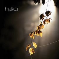 Armenia by haiku on SoundCloud A World fusion song made in honor and respect for the Armenian people