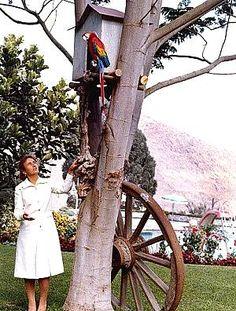 Lovitură de stat 1989 | Nicolae Ceauşescu Preşedintele României site oficial 22 Decembrie, Gq, History, Halloween, Instagram, Military, Venice, Historia, History Activities