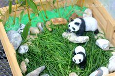 panda bear and bamboo small world set up -- The Imagination Tree