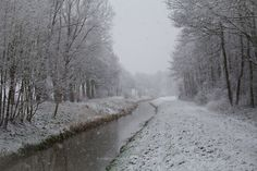 Welcome Winter - first snow of the year