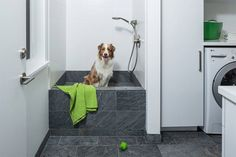 Having a dirty dog run through the house is never a good idea. Here's 5 benefits (with pictures) why you should include a dog washing station in your home. Animal Room, Walk In Closet Design, Closet Designs, Laundry Room Utility Sink, Laundry Rooms, Utility Sinks, Dog Bath Tub, Pet Washing Station, Walk In Bath