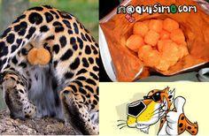 Imagen Graciosa de Cheetos