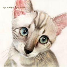 困ったニャン I Love Cats, Cute Cats, Cat Colors, All About Cats, Animal Paintings, Dog Art, Some Fun, A3, Colored Pencils