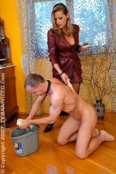 Female led household spank dad obviously were