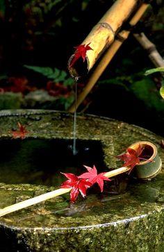 theserpentscoil:    Tsukubai, water basin, in Ryoan-ji, Kyoto