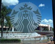 Starbucks In Epcot's Future World | Overlooking the Fountain