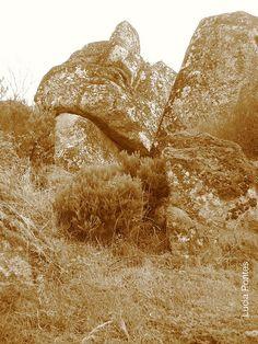 Serra da Estrela by PontesLucia, via Flickr