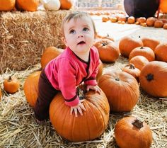 Great article on what to do with your little ones in the fall!