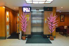 21 Best Hotel Sogo Branches Images Branches Eggplants Aurora
