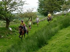 Man vs Horse Marathon, Powys – one of many great events happening in Wales this June: https://www.qualitycottages.co.uk/aroundwales/4-great-events-enjoy-wales-june/