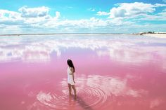 Las Coloradas: The Wonderful Pink Lakes of Mexico | Green and Turquoise