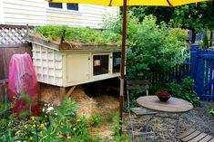 Below the rabbit hutch - compost bin; above the rabbit hutch - garden bed. Love it!