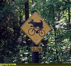 """Slow Down, This is Gonna Blow Your Mind - Funny memes that """"GET IT"""" and want you to too. Get the latest funniest memes and keep up what is going on in the meme-o-sphere. Funny Warning Signs, Funny Signs, Funny Memes, Hilarious, Meanwhile In, People Laughing, Weird Pictures, Top Funny, Slow Down"""